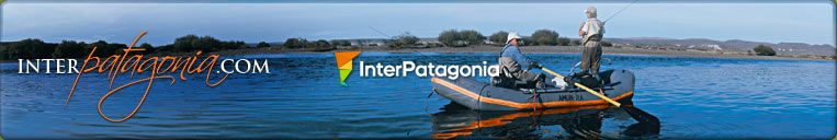 Inter Patagonia - Argentinian and Chilean Patagonia Guide
