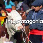 Feria Rural de Jun�n de los Andes
