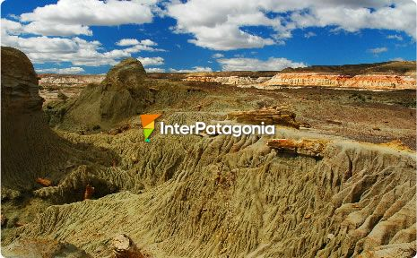 Sarmiento Petrified Forest