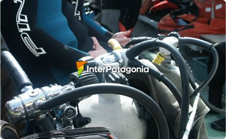SCUBA Diving in Viedma and Patagones