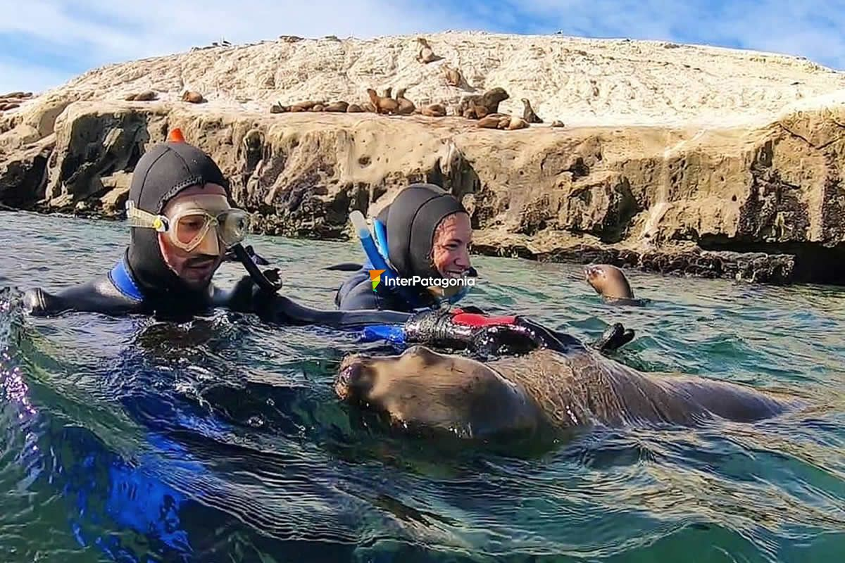 Scuba Diving at Puerto Madryn