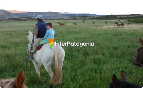 Horseback tour around Aluminé