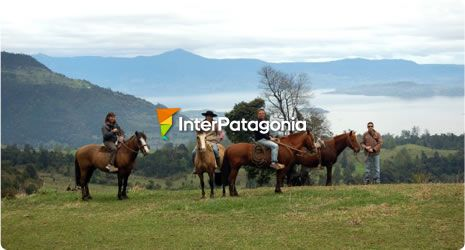 Horseback Riding on Mount Pumol