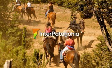 Horseback Rides at Campanario Hill
