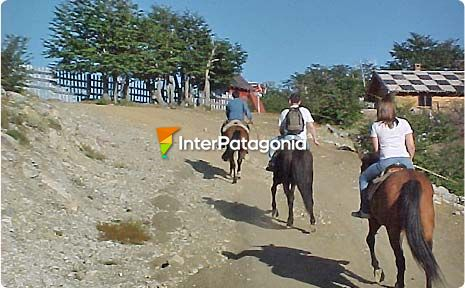 Horseback Excursion to Mount Bayo Vantage Points, Villa La Angostura