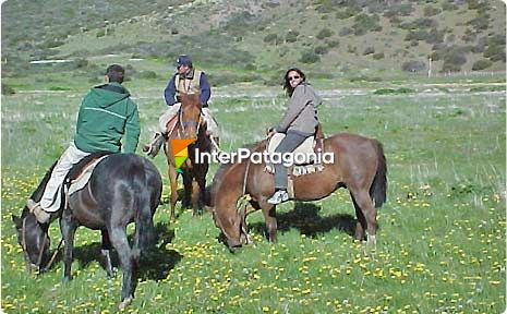 Galloping in La Petrona