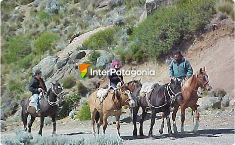 Horse Riding in El Calafate