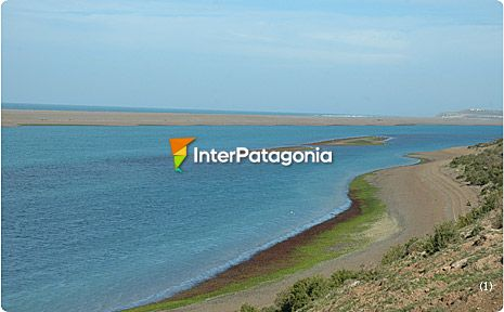 Caleta Vald�s Protected Reserve