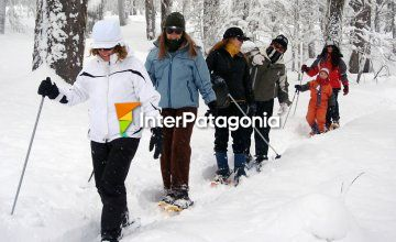 Snowshoeing on the Snows of Chapelco