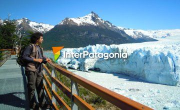 The Perito Moreno glacier from the footbridges