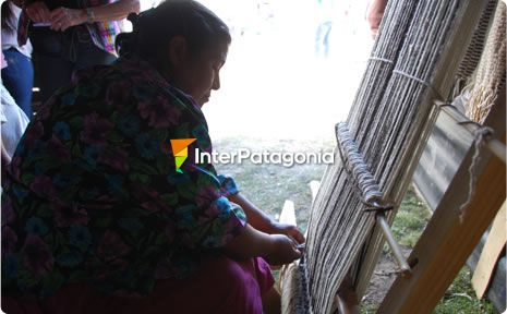 Mapuche Loom Festival in Caviahue