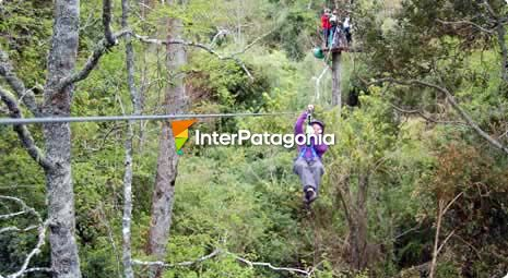 Zip-lining in at Chollinco Estate