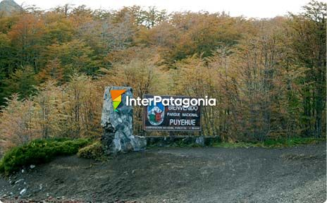 Cardenal Samor� International Pass, ex Puyehue Pass