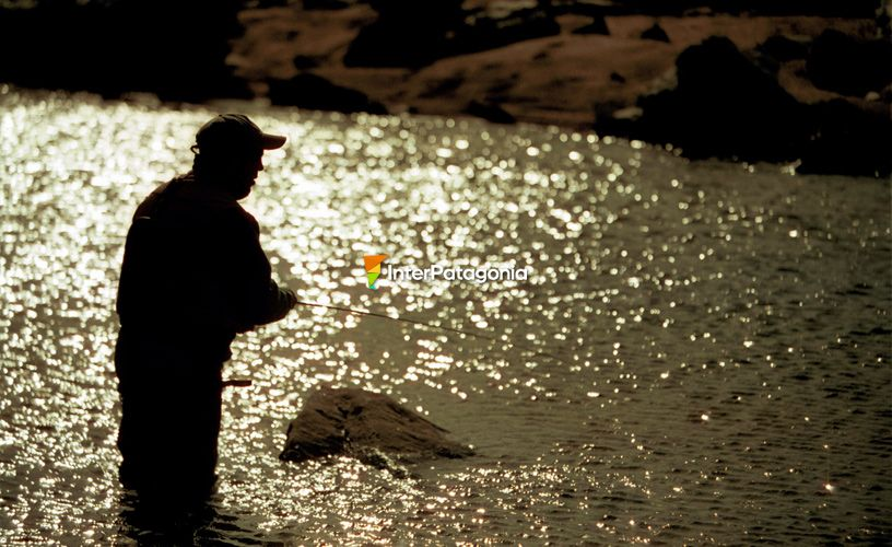 The passion for fly fishing