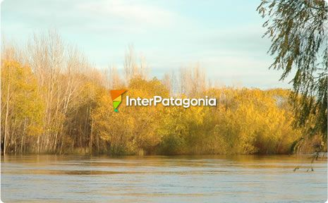 Fishing in the mid Limay