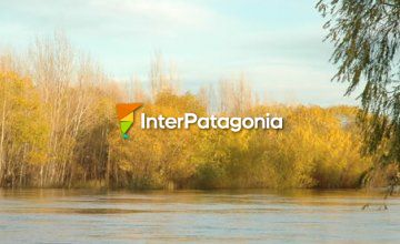The Limay, for Anglers