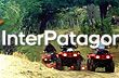 ATV Riding around Puc�n