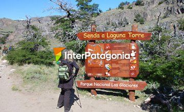 Trekking to Lake Torre