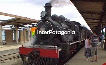 Recollection Train in Valdivia
