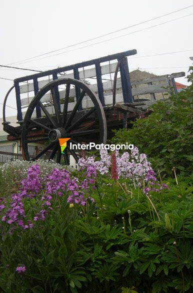 pictures of ushuaia jardines de ushuaia